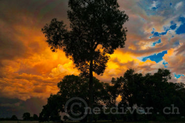 back-to-nature-sunset4