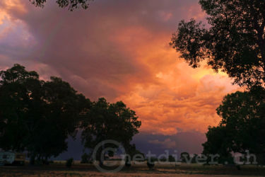 back-to-nature-sunset9
